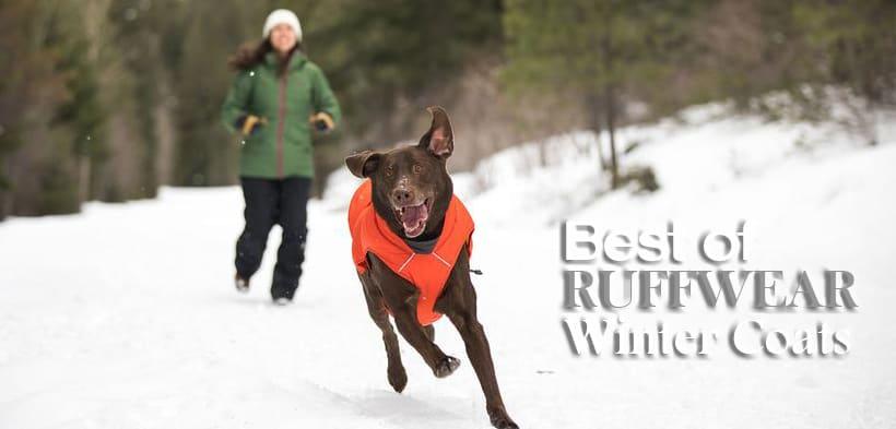 Ruffwear Dog Jackets For Winter